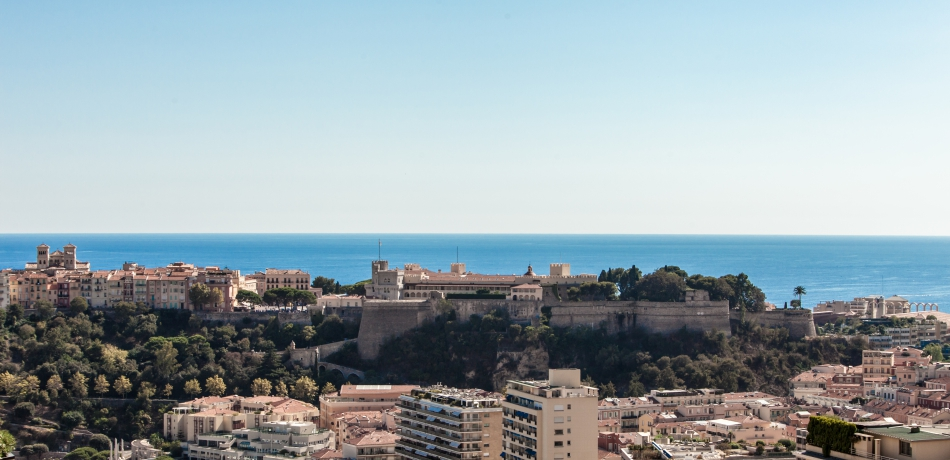 Location Vente Appartement Monaco PENTHOUSE - CARRE D'OR - VICTORIA